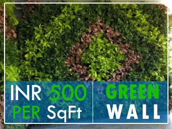 oxywall green wall